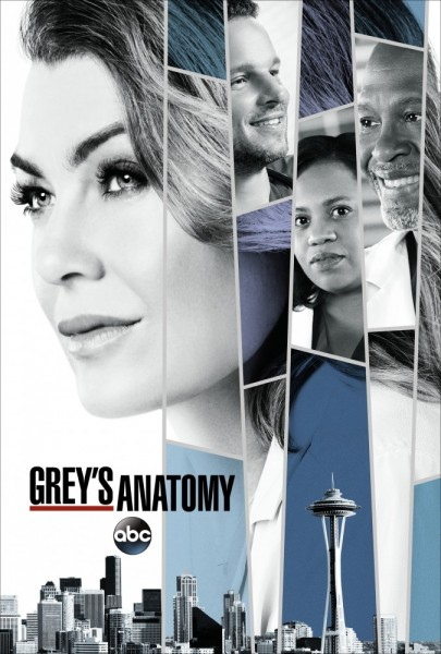 Анатомия страсти / Grey's Anatomy  / Анатомия Грей с 1 по 15 сезон (2005-2018) WEB-DLRip