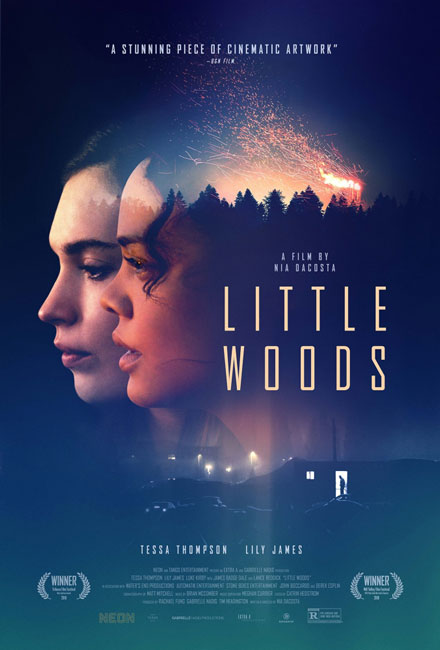 Лесок / Little Woods (2018) WEB-DLRip | HDRezka Studio