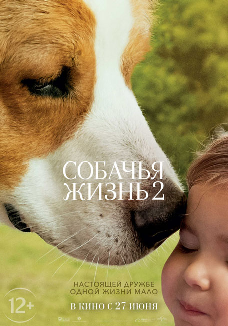 Собачья жизнь 2 / A Dog's Journey (2019) BDRip | iTunes